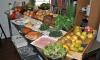 Training 'Gezond koken voor cateraars' met GDF Suez